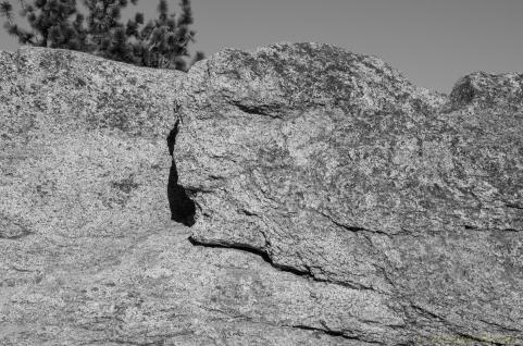 Yosemite-12