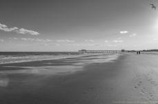 myrtle beach-6