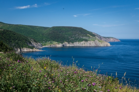 meat cove ns-20